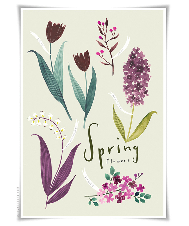 Eva Julliet Spring flowers 2